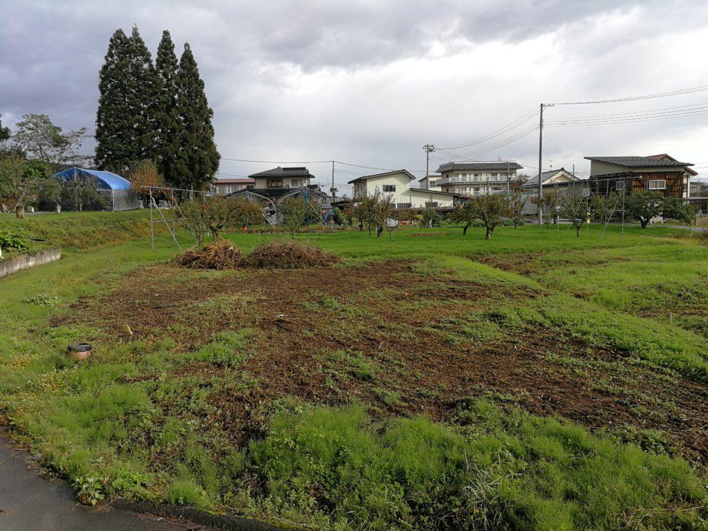 荒廃農地 後