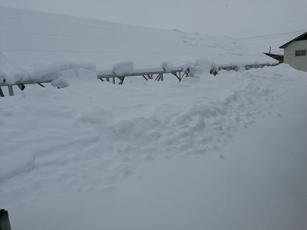 大雪 太陽光パネル